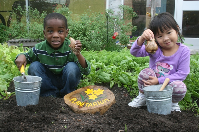 Image result for school gardens